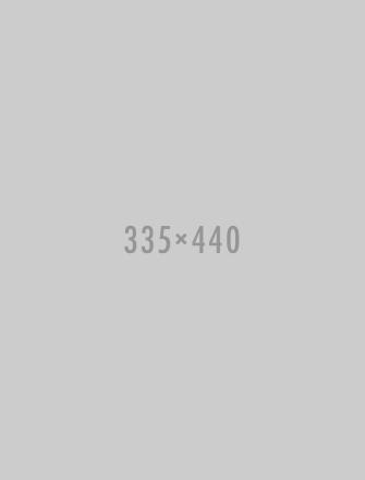 335x440